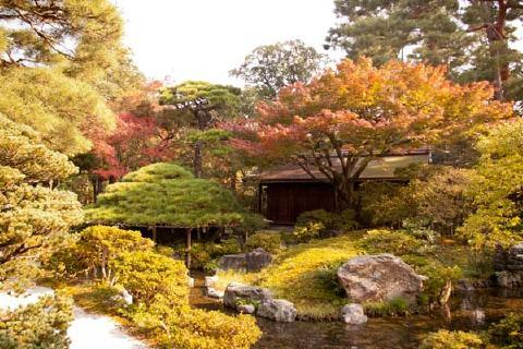 紅葉が美しい秋の庭園