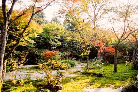 宝筐院庭園