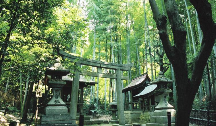 青蓮院門跡(粟田御所)