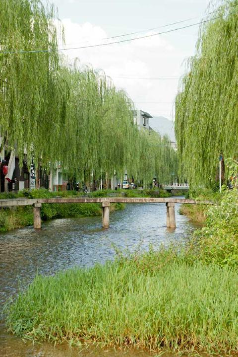 白川・柳と行者橋