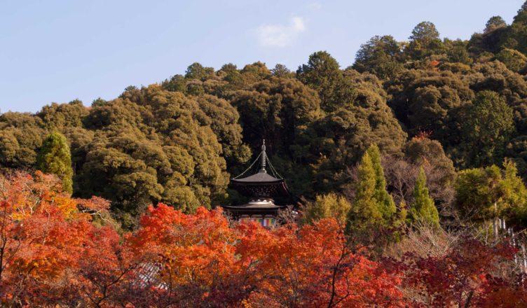 永観堂 (禅林寺)