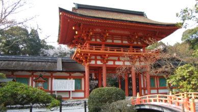 京都のおすすめ桜スポット 4上賀茂神社