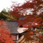秋 神護寺
